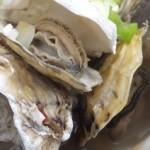 太良町のおすすめカキ小屋はココ!【牡蠣しるがスゴイ!カニ汁も!】