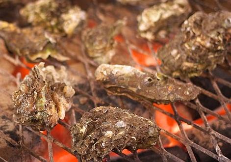 牡蠣を食べるなら太良町がおすすめ!【カキ・カニでお腹いっぱい】